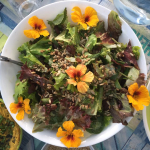Healthy organic food served on Yoga and Surf Retreat